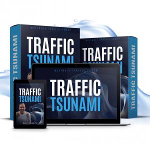 Traffic Tsunami Webinar kaufen