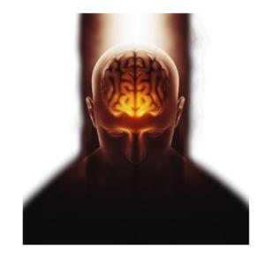 Silent Subliminal Software von SilentSubliminal IBL erfahrungen